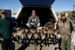 Big Geese