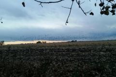 early-season-colorado-waterfowl-hunting