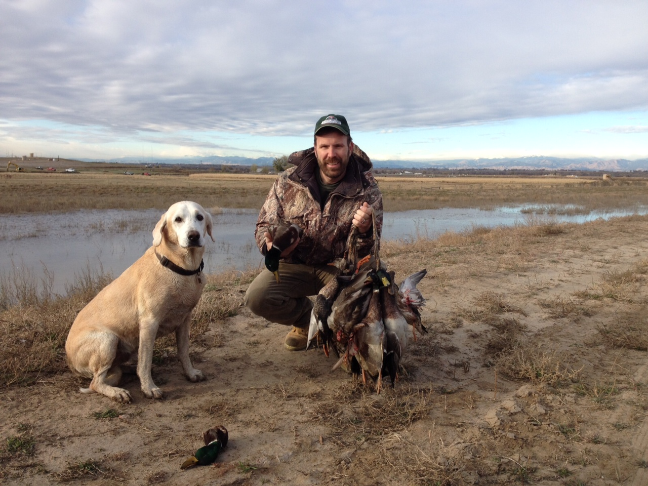 Duck-Hunting-Limits