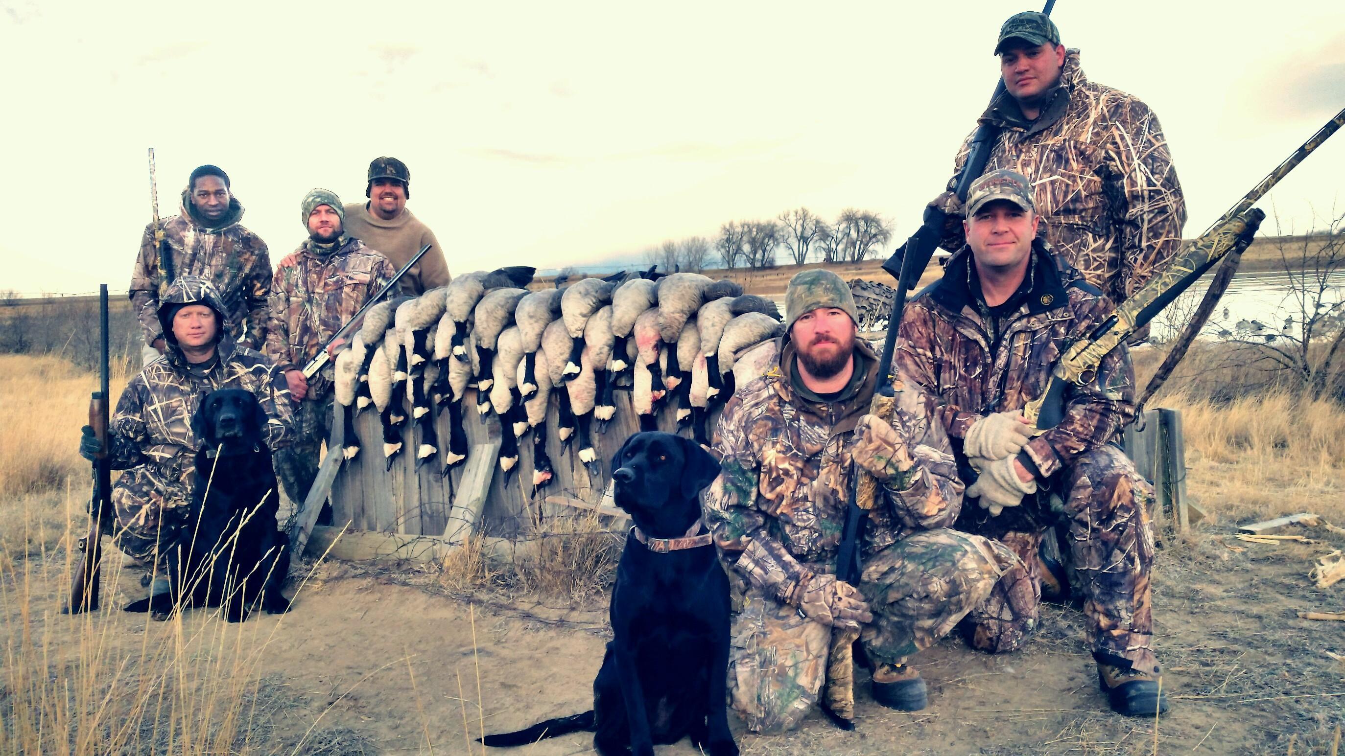 Goose-Hunting-Colorado