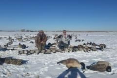 Canada-Goose-Hunting-Colorado